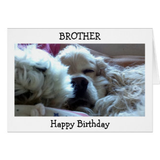 HAPPY BIRTHDAY BROTHER-TAKE NAP/DO WHATEVER U WISH GREETING CARD