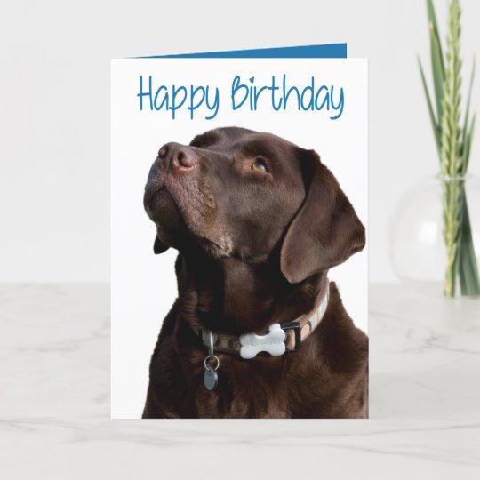 Happy Birthday Brown Labrador Retriever Puppy Card Zazzle