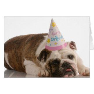 Happy Birthday Bull Dog Card
