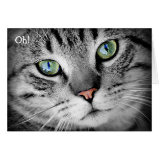 "Happy Birthday Card: Cat says ""Oh!"" Greeting Card"