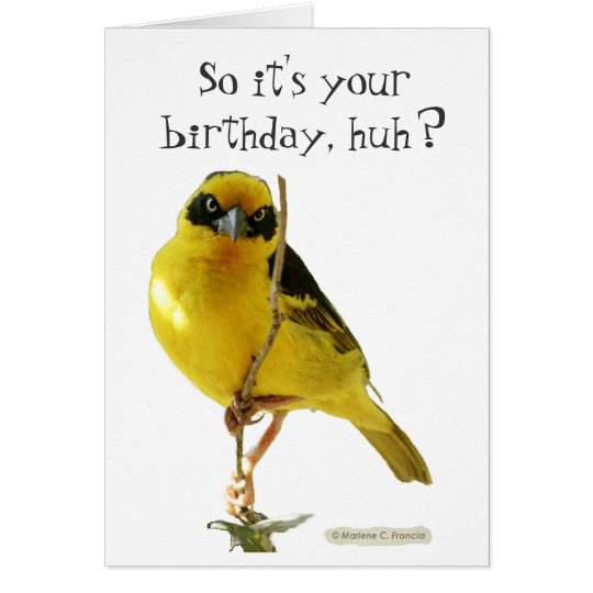 Happy birthday card (for him) by LOLBirds