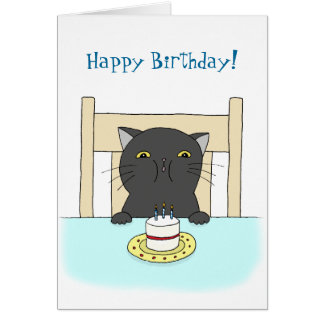 Happy Birthday Funny Black Cat Fat Cat Gifts - T-Shir...