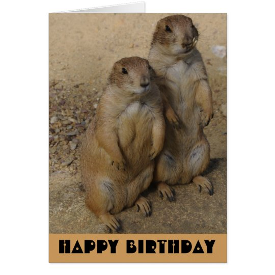 Happy Birthday card Prairie Dog