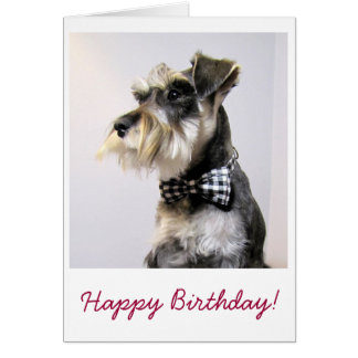 Happy Birthday card with picture of Schanuzer