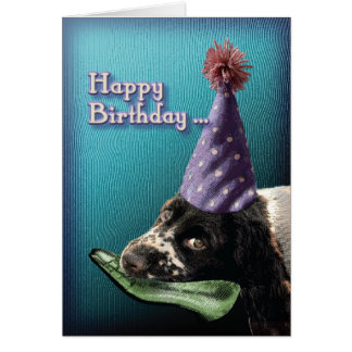 Happy Birthday chew shoe.... Card
