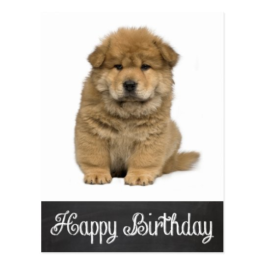Happy Birthday Chow Chow Puppy Chalkboard Postcard