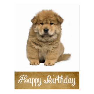 Happy Birthday Chow Chow Puppy Dog Postcard