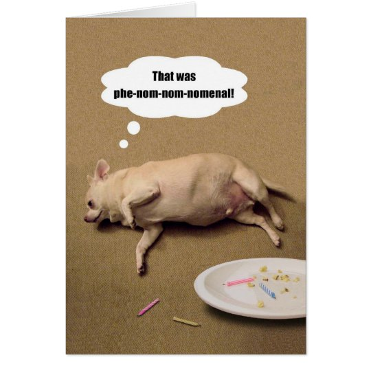 Happy Birthday Chubby Chihuahua Greeting Card