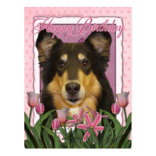 Happy Birthday - Collie - Caroline Postcard