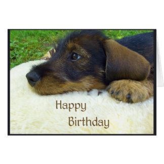 Happy Birthday, cute Dachshund puppy Greeting Card