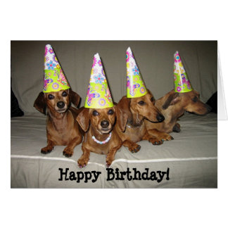 Happy Birthday Dachshund Card