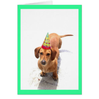 Happy Birthday Dachshund Greeting Card