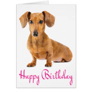 Happy Birthday Dachshund Puppy Dog Card