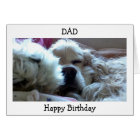 HAPPY BIRTHDAY DAD-TAKE NAP/DO WHATEVER U WISH CARD