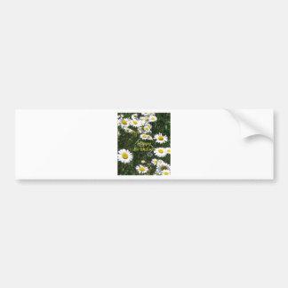 Happy Birthday Daisies Bumper Stickers