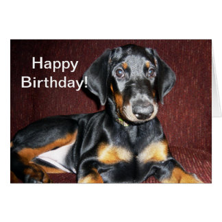Happy Birthday - Doberman Pinscher Puppy Card