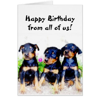 Happy Birthday Doberman puppies greeting card