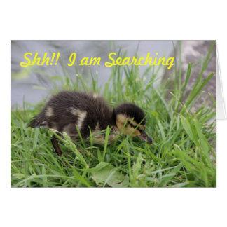 Happy Birthday Duck Greeting Card