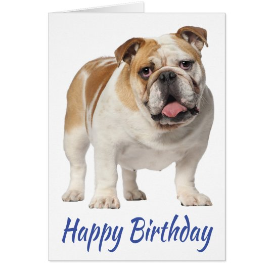 Happy Birthday English Bulldog Puppy Dog Card