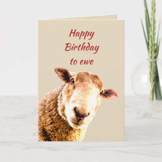 Happy Birthday Ewe Funny Sheep Animal Humour Card Zazzle Co Uk