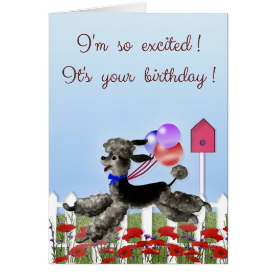 Happy Birthday, Excited Black Poodle in a Garden