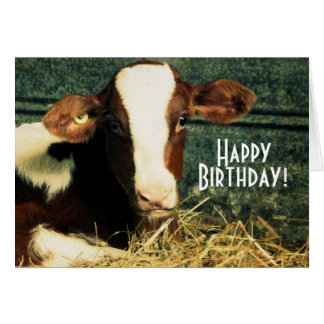Happy Birthday Farmer - Brown and White Calf Card
