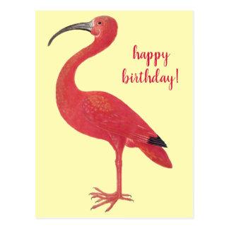 Happy Birthday Flamingo | Fine Art Yellow Postcard