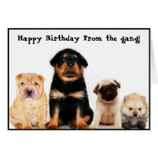 Happy birthday form the gang Puppies greeting card