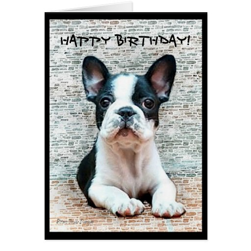 Puppy Birthday Invitations as good invitation sample
