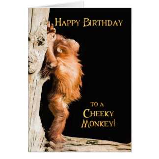 Happy birthday from a baby orang utan card
