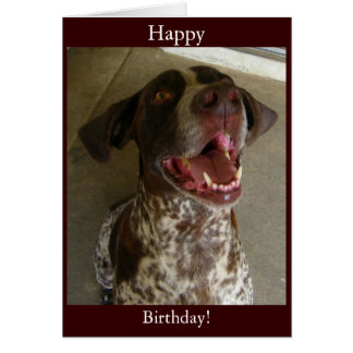 Happy Birthday from Happy Dog Greeting Card
