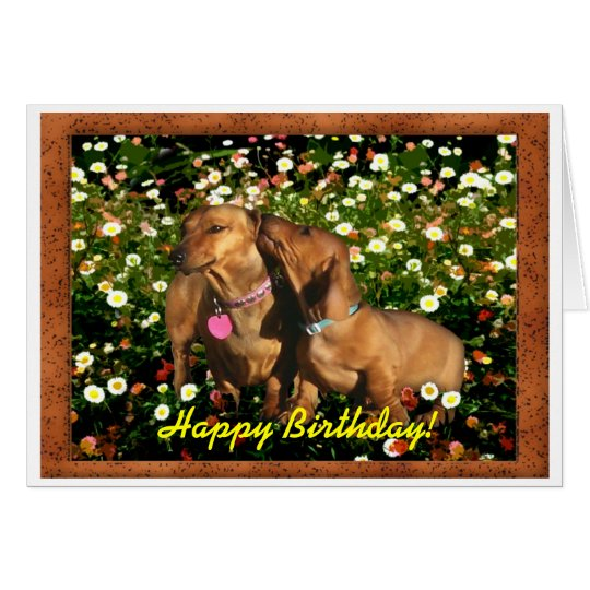 Happy Birthday from the Dachshunds! Card