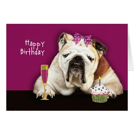 happy birthday, getting older, funny dog, pink bow greeting cards