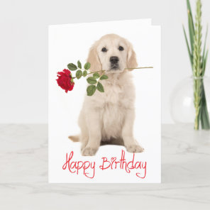 Happy Birthday Golden Retriever Puppy Dog Card