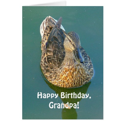 """Happy Birthday, Grandpa"" Duck Photo Greeting Cards"