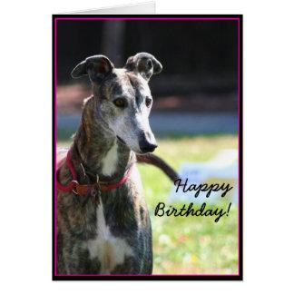 Happy Birthday Greyhound greeting card