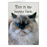 Happy Birthday Humour Himalayan Persian Cat