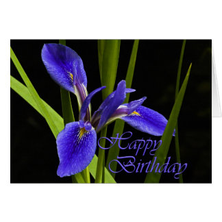 Happy Birthday Iris Card