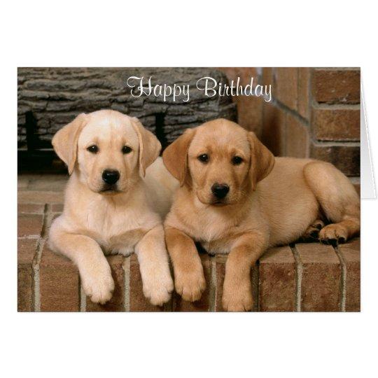 Happy Birthday Labrador Retriever Puppies Card