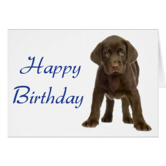 Happy Birthday Labrador Retriever Puppy Dog Card