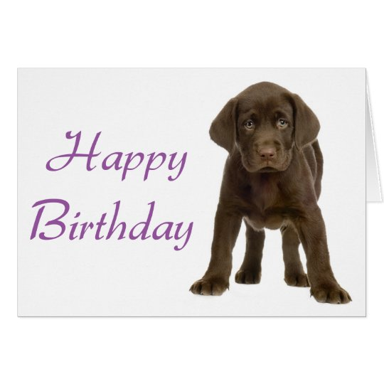 Happy Birthday Labrador Retriever Puppy Dog Card