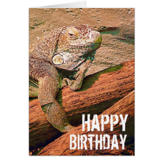 Happy Birthday  - Lazy Lounge Lizard Chillaxing Card