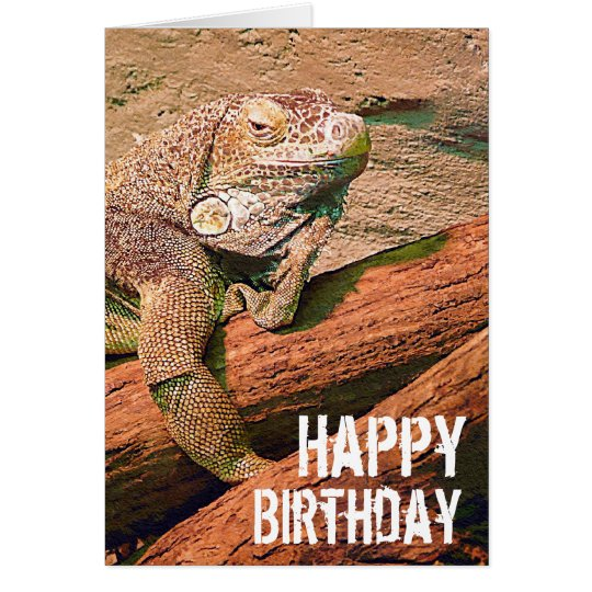 Happy Birthday - Lazy Lounge Lizard Chillaxing Card