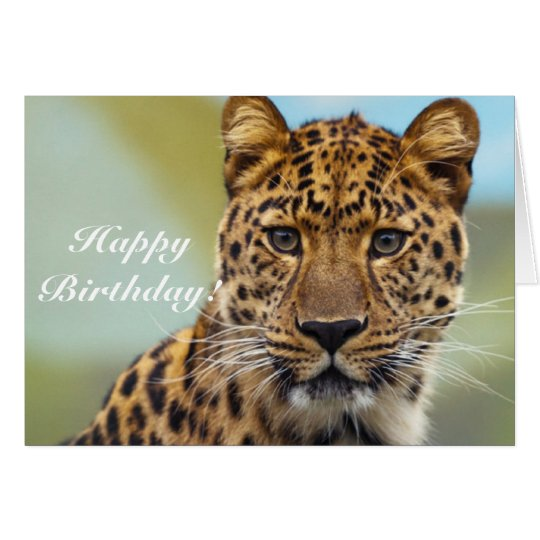 Happy Birthday Leopard greeting card