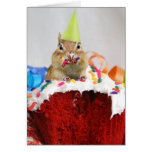Happy Birthday Little Chipmunk