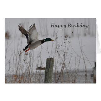 Happy Birthday Mallard Duck Card