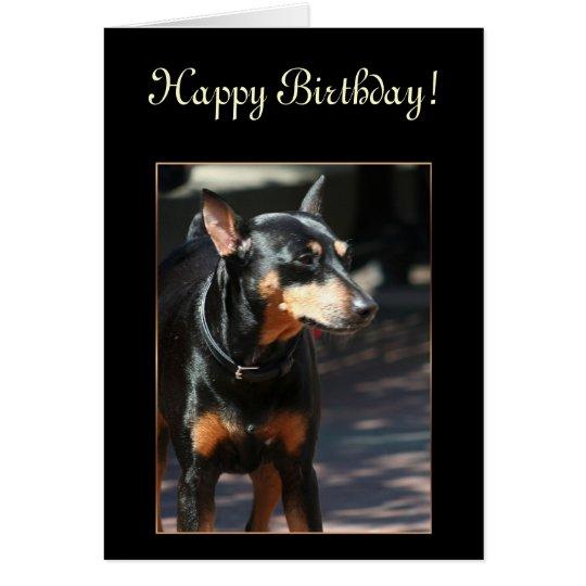 Happy Birthday Miniature Pinscher greeting card