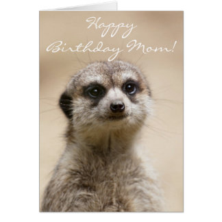 Happy Birthday Mom Meerkat Card