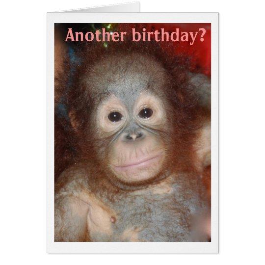 Happy Birthday Monkey Around Card