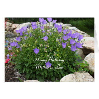 Happy Birthday Mother-in-Law-Canterbury Bells Greeting Card
